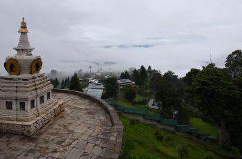 Sonam Dorji Farm House